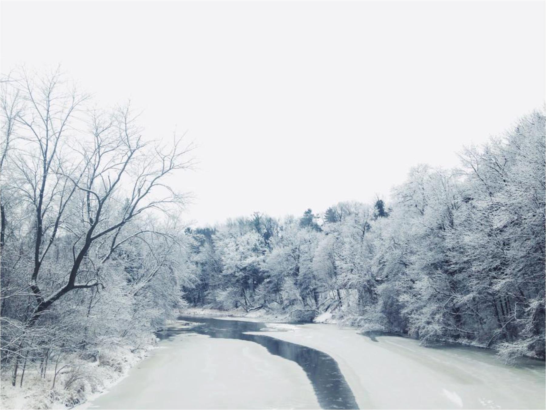 2016-01-21_0021.jpg