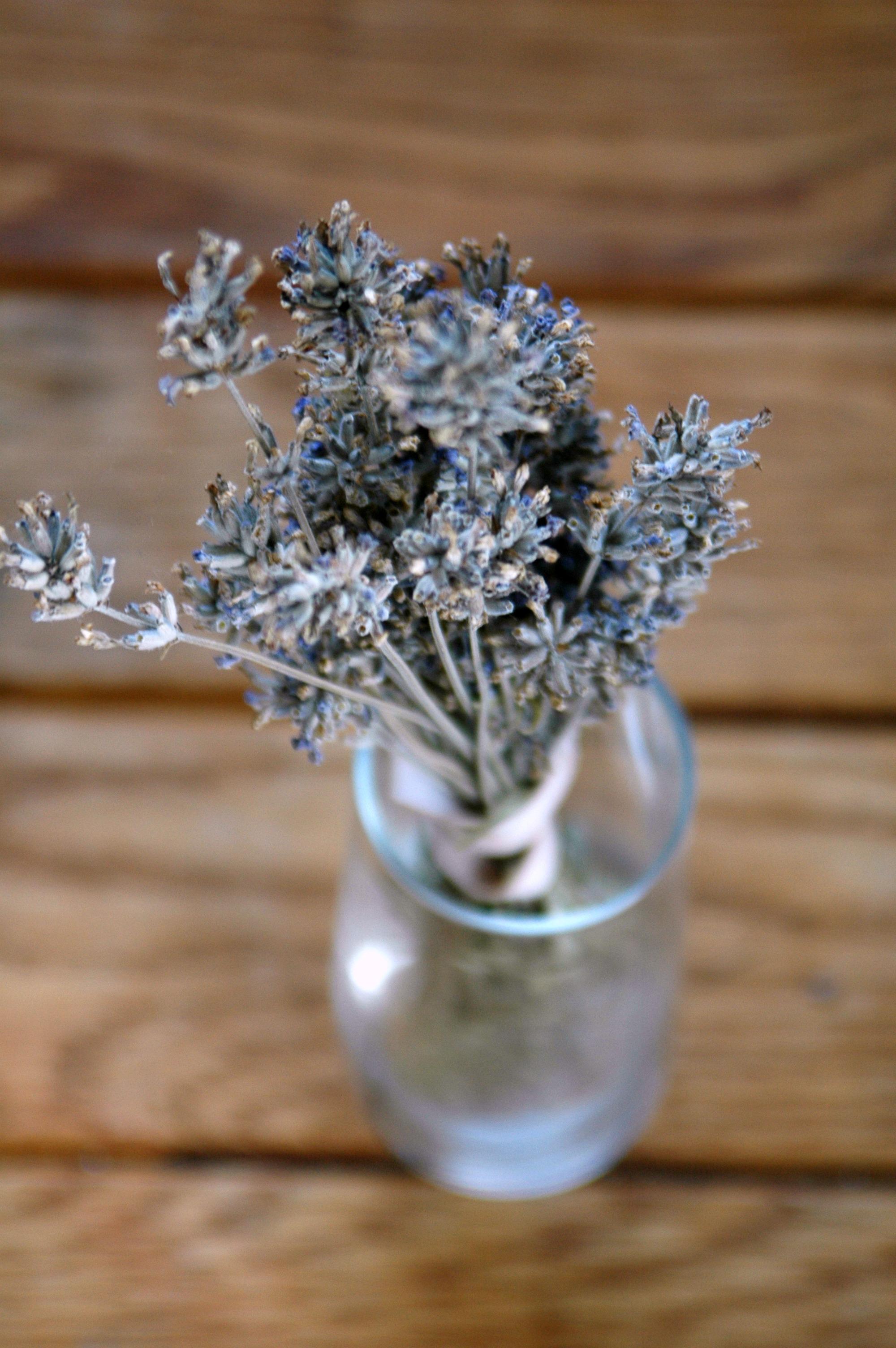 spices_lavender.jpg