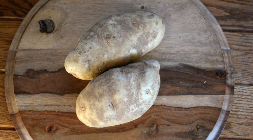 gnocchi potatoes