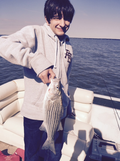 We rented this boat at Lake Marion in SC. Alex caught this nice striper. We got another striper, some more largemouth, and a white crappie.