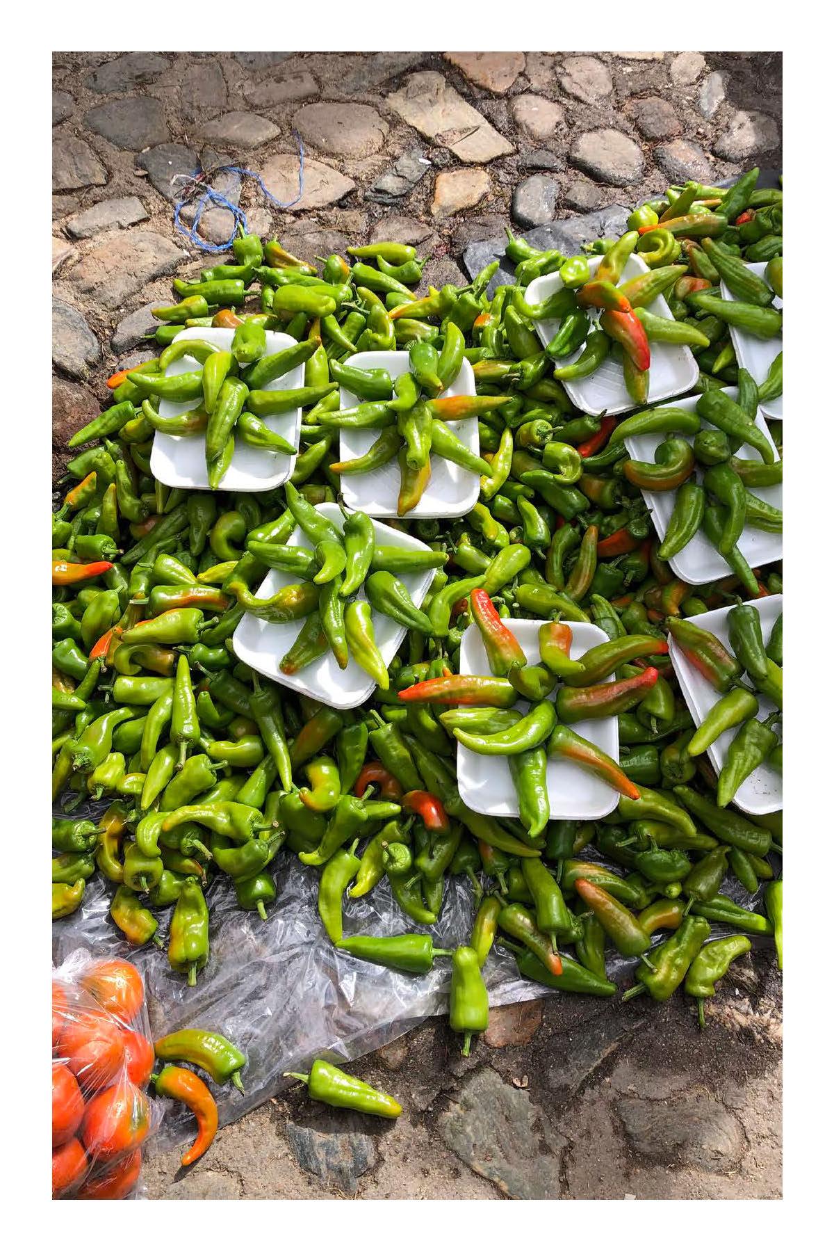 mercado-oaxaca-FINAL-print-PS_Page_30.jpg