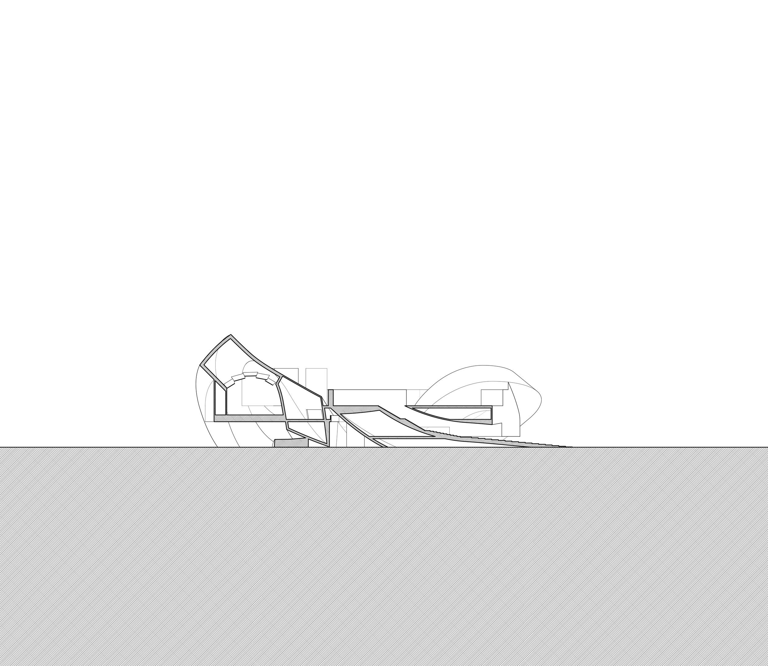 Squiggle_Shape-03.jpg