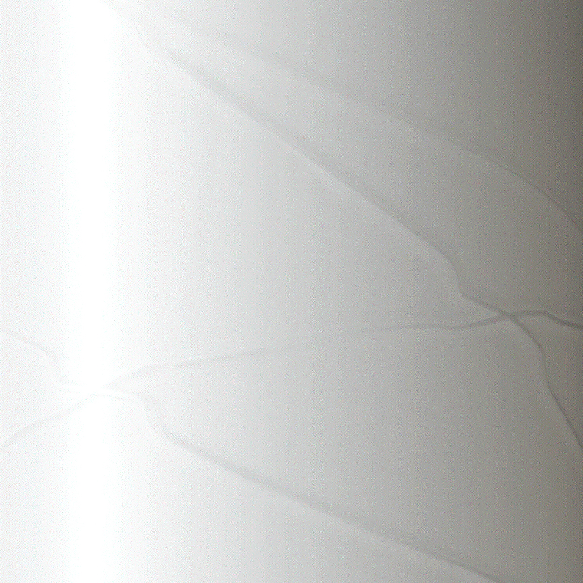 LIGNE Vase Duo_White-DETAIL.jpg