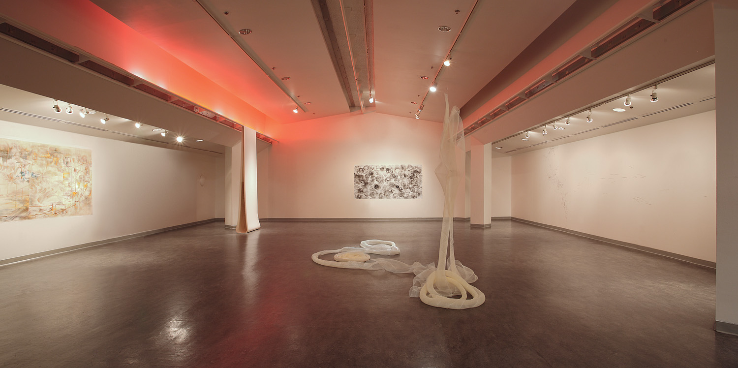 Seattle University Visual Artist in Residence  Installation Overview  2013