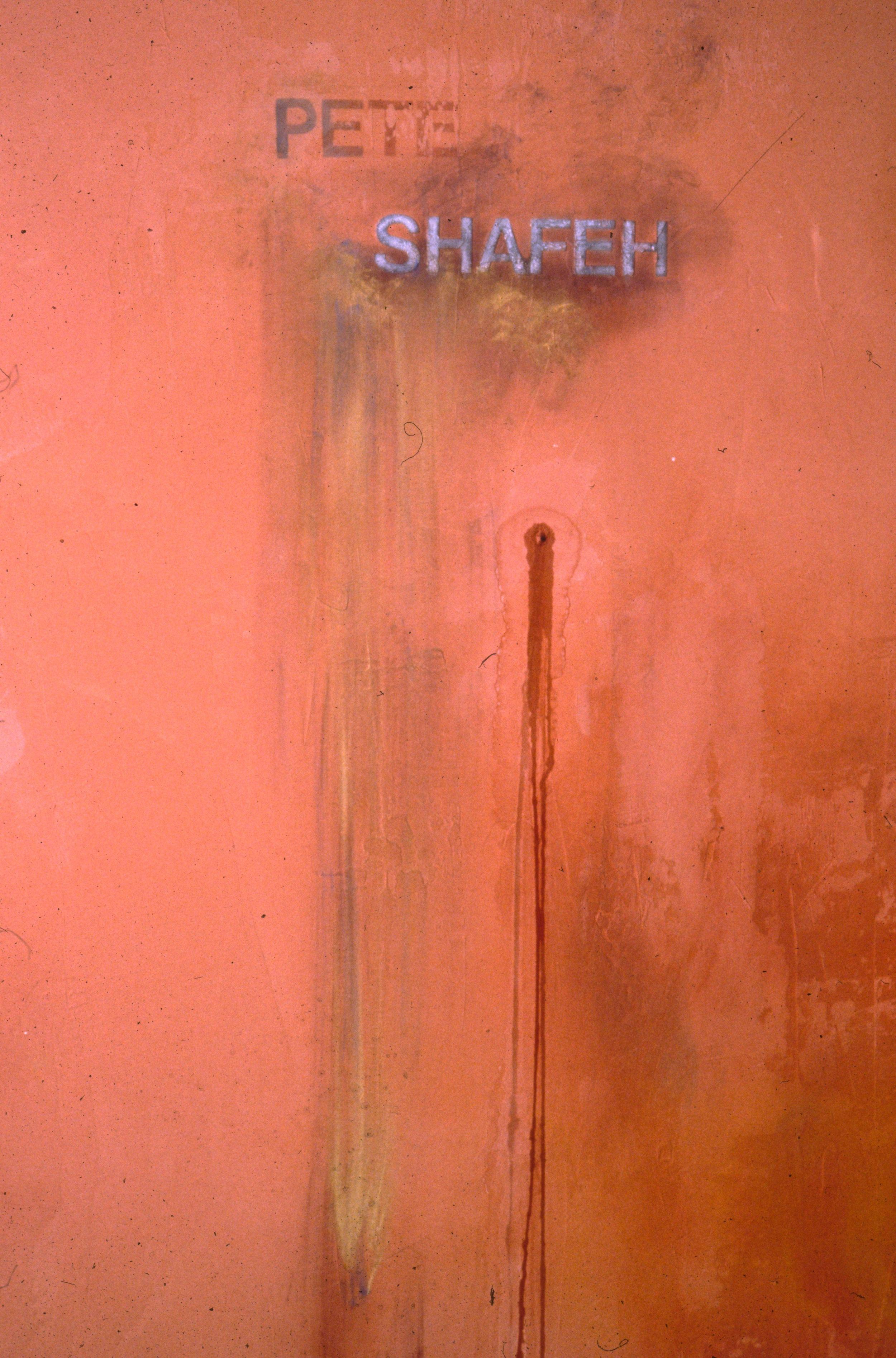 find the Syrian boys  installation detail  plaster, pigment, water  Bellevue Art Museum, Bellevue, WA  1992