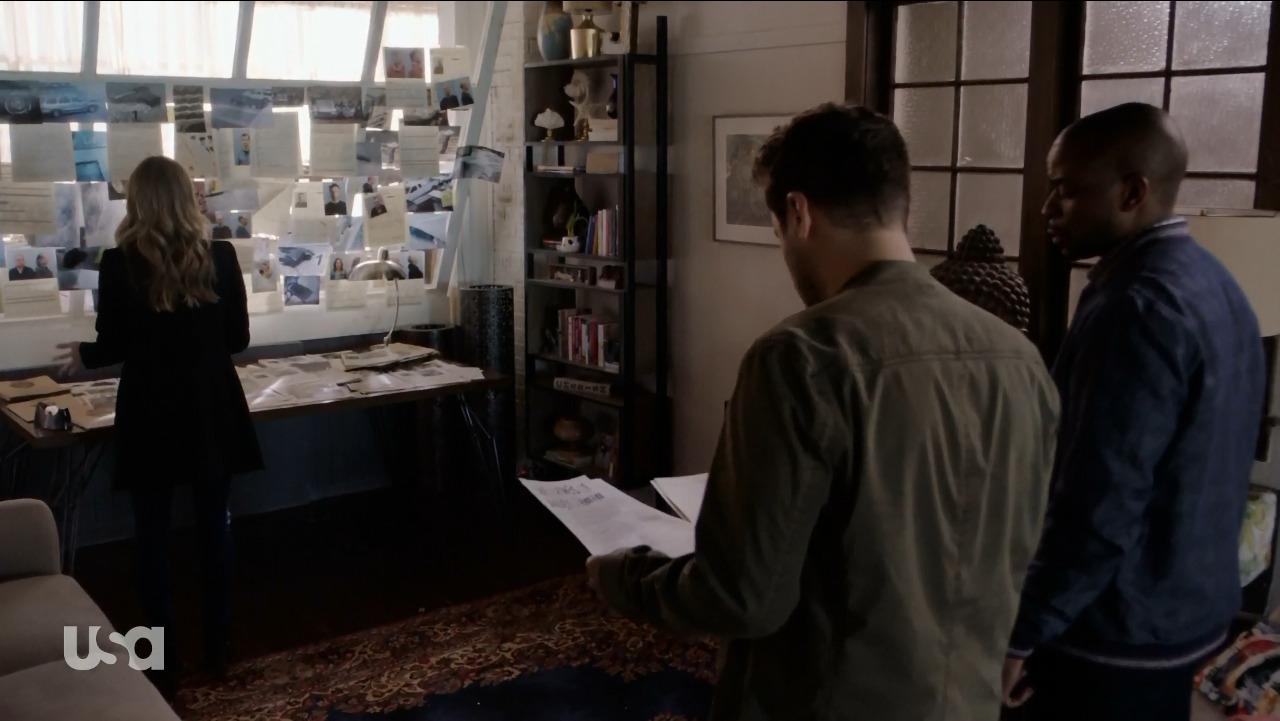 Psych: The Movie  (USA, 2017)