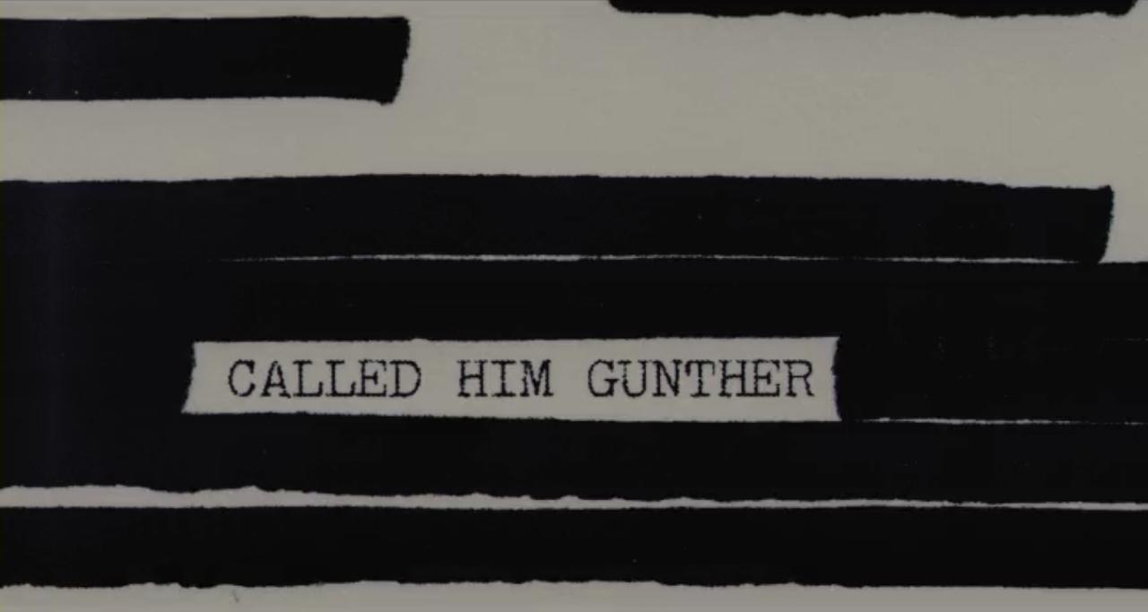 Killing Gunther  (dir. Taran Killam, 2017)