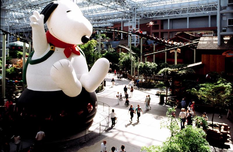Snoopy Bounce 5310232664[K].JPG