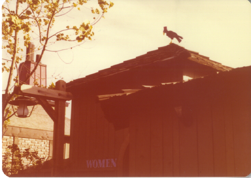 Spillikin Corners Crow 3484154745[K].JPG