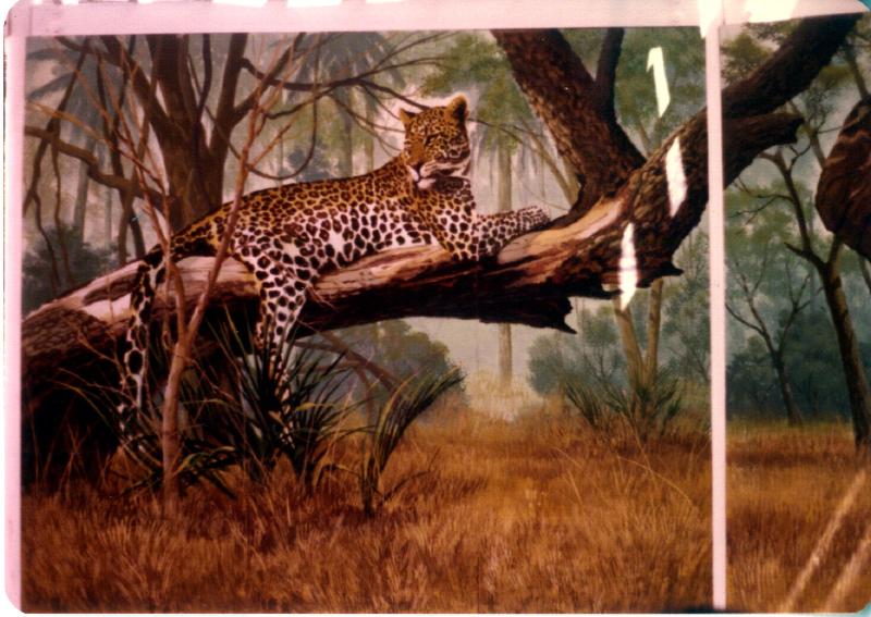 MAGIC MOUNTAIN Animal chatter 04 3484093257[K].JPG