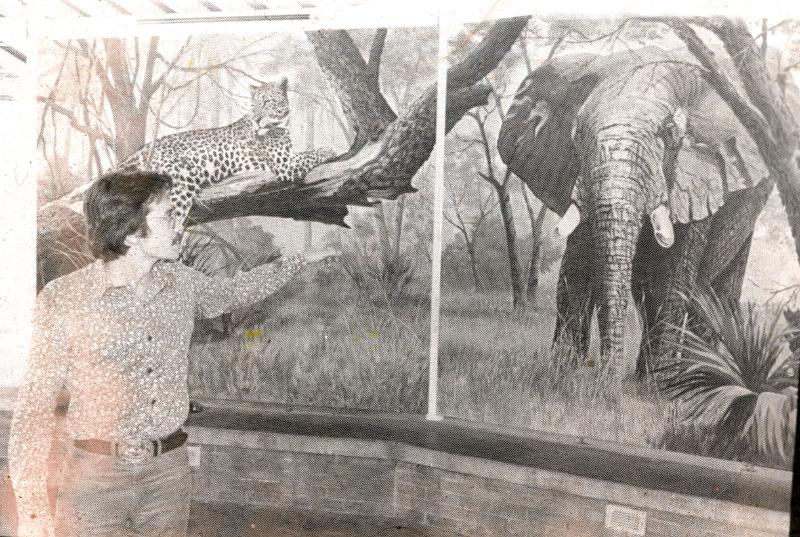 Magic Mountain animal chatter murals 3484906558[K].JPG