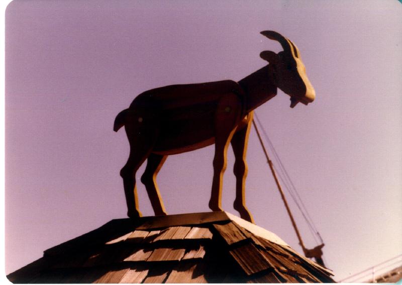 MAGIC MOUNTAIN Animal Farm 03 3484097467[K].JPG