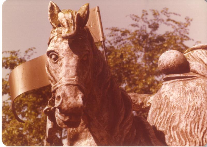 MAGIC MOUNTAIN Troll on horse 03 3484106817[K].JPG