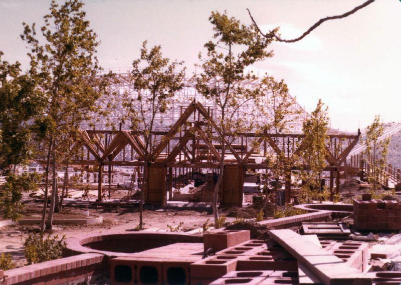 MM Collossus construction 01 6970968629[K].JPG