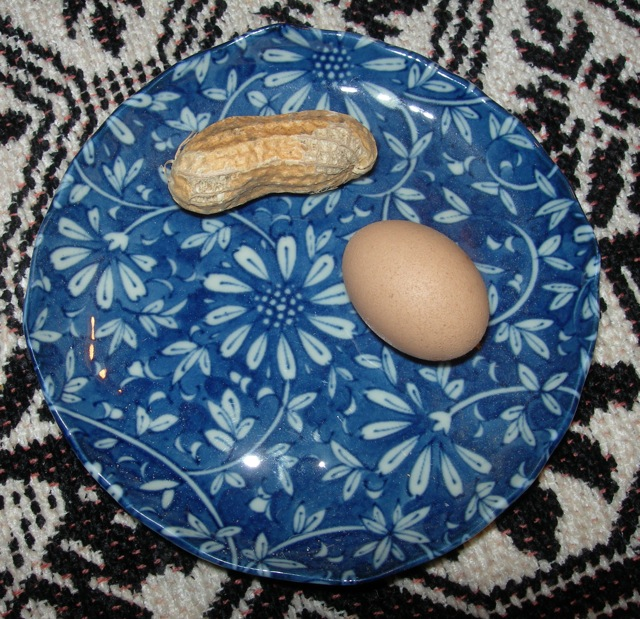 A mini hen egg [with peanut for size comparison]. I save all of these tiny treasures.