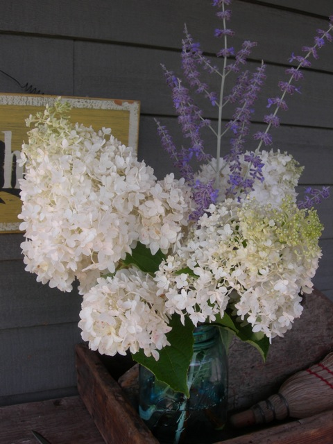 A simple bouquet of hydrangeas and Russian sage in a Ball jar.