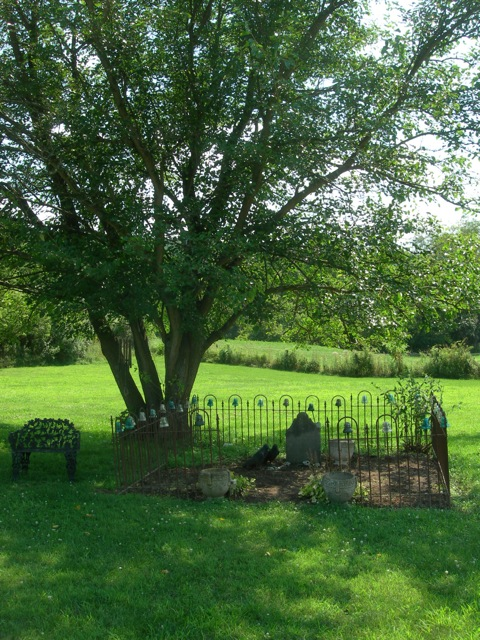 Living on PA farmland, we only have one tree near our house.  German farmer, Daniel Peifer has been resting under its shade since Friday, the 13th of May,  1814.