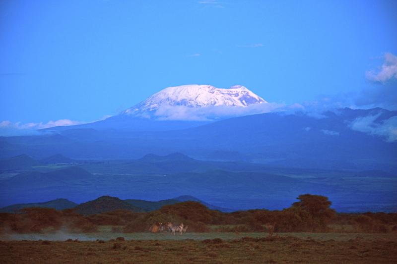 Kilimanjaro snow covered.jpg