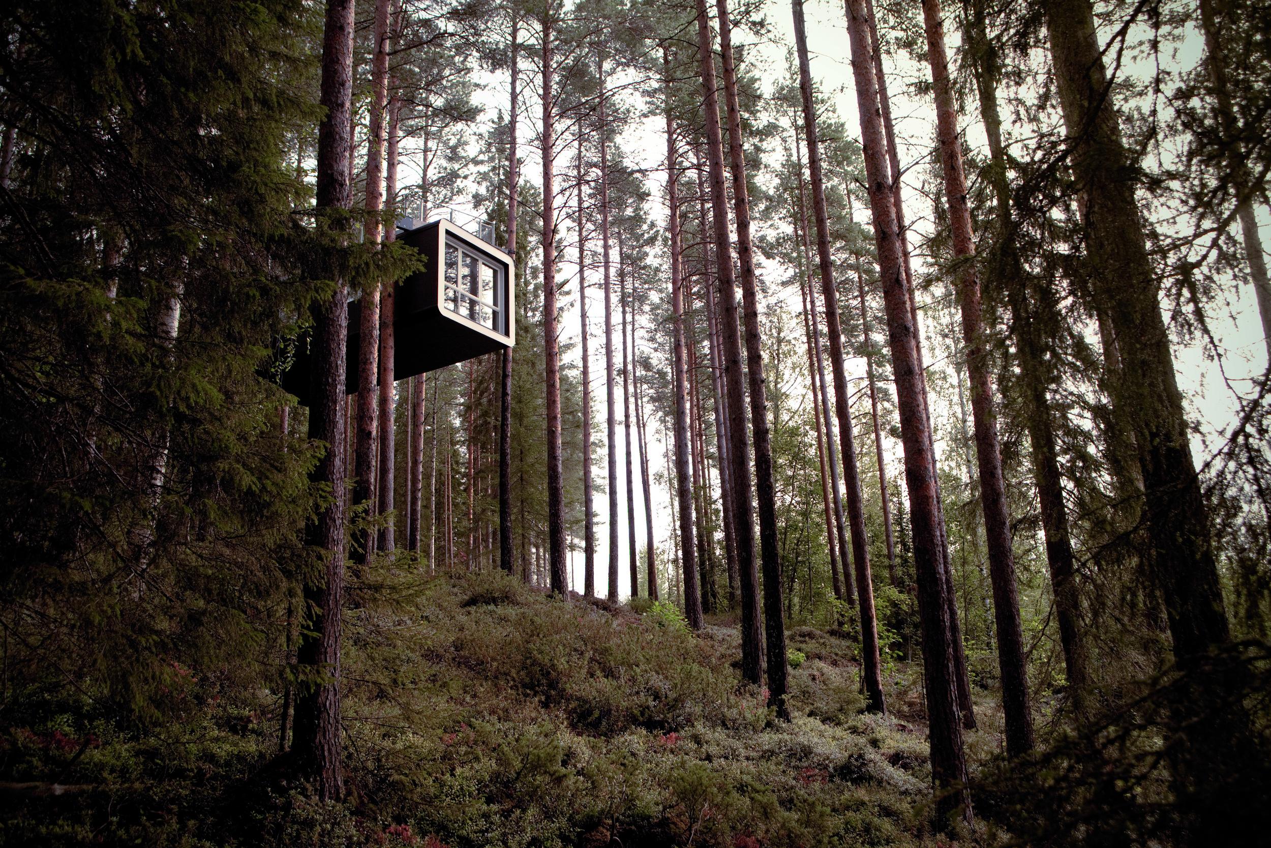 Treehotel - SWEDEN