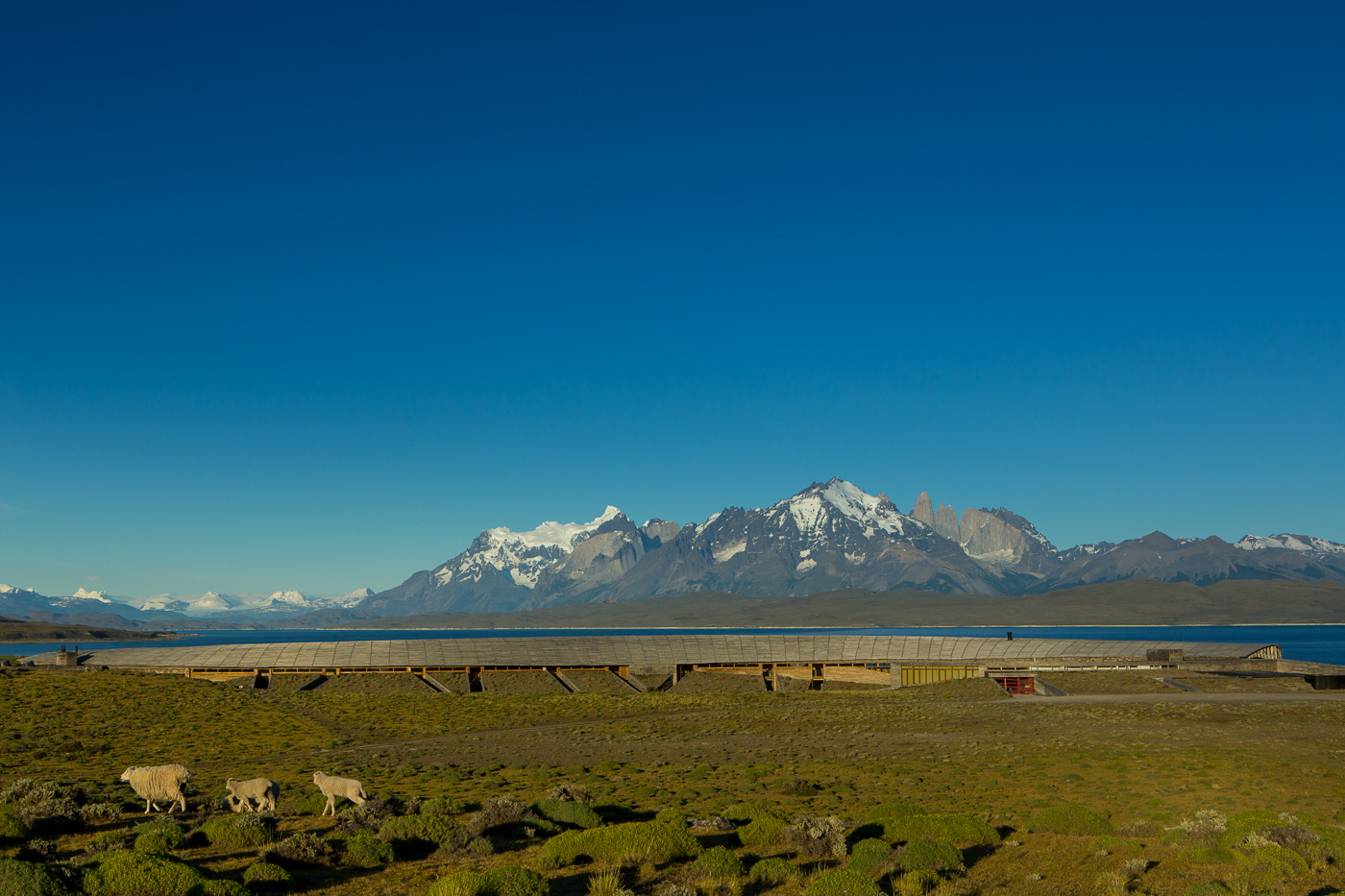 Tierra Patagonia with lake Sarmiento in background(2).jpg