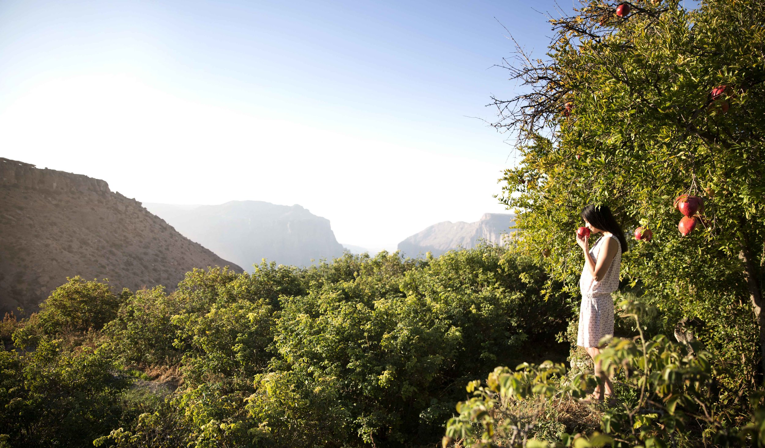 Anantara Al Jabal Al Akhdar Resort - Destination 01.jpg