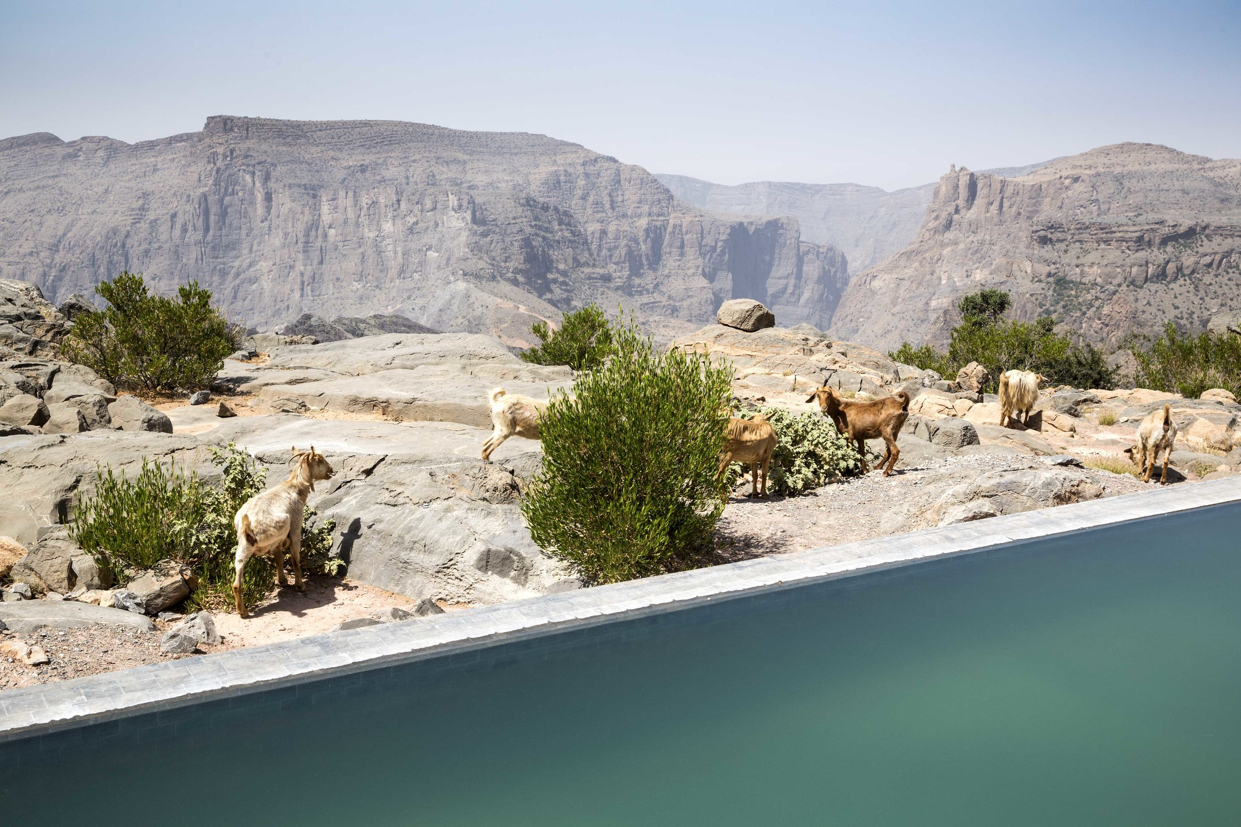 Anantara Al Jabal Al Akhdar Resort - Cliff Pool Villa View 04.jpg