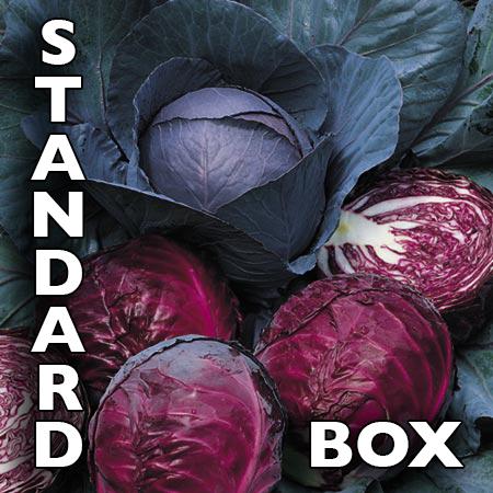 Standard_Box.jpg