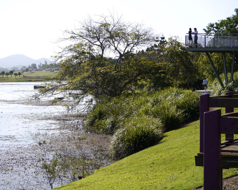 The trail passes through the Botanic Gardens, at the edge of the lagoons.
