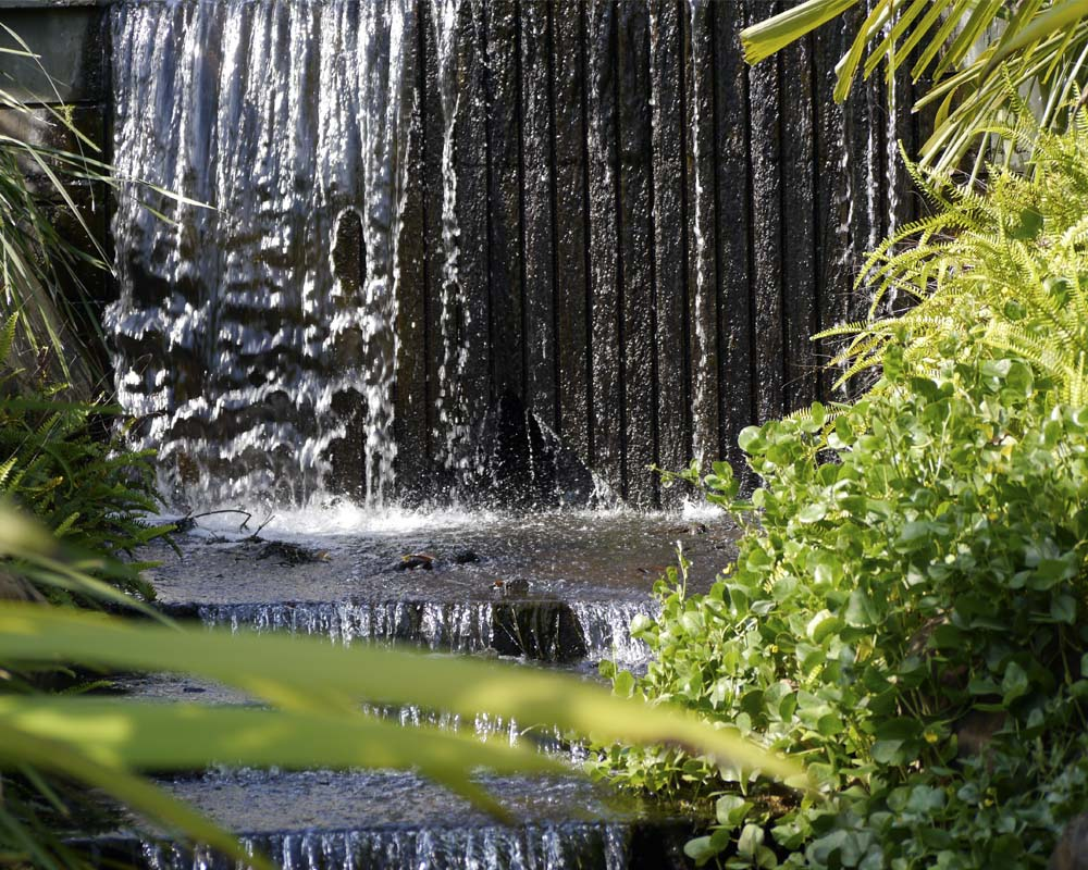 Cascade at the Botanic Gardens.