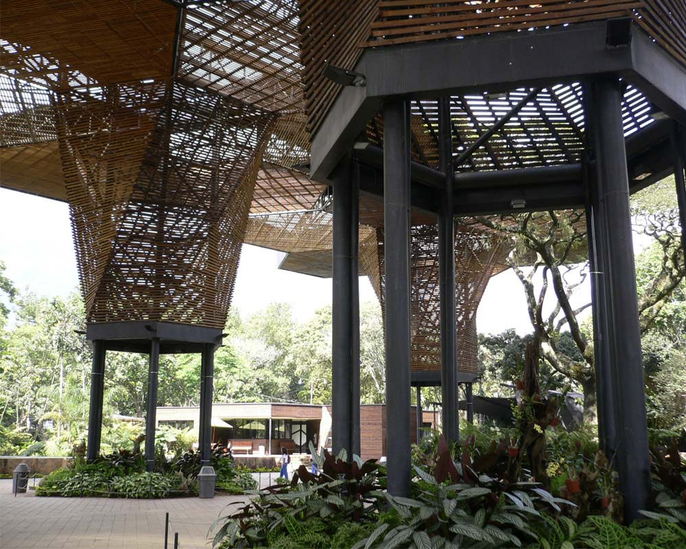 The Orchideorama, at the Medellin Botanic Gardens