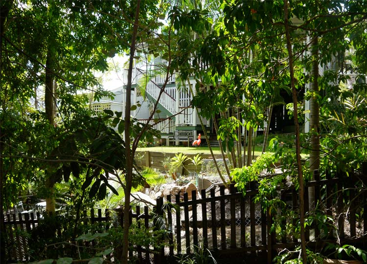Brisbane's luckiest neighbours look onto the Arboretum from their house and garden.