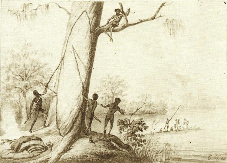 Image: William Blandowski's  Illustrated Encyclopaedia of Aboriginal Australia , published 1857. Wikimedia Commons.