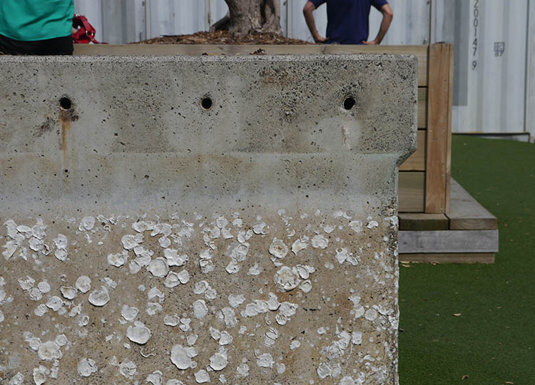 Water stains and embedded oyster shells in the recycled concrete at Silo Park, Auckland.