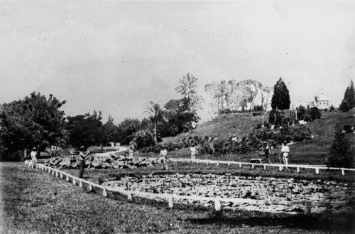 Curator's Cottage on the hill overlooking the lily pond, 1868.