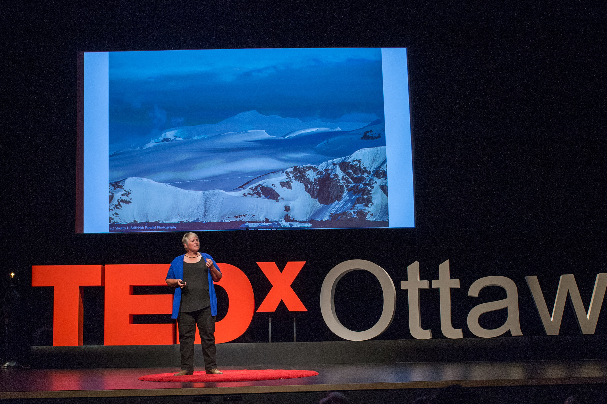 How passion, grit, and resilience can take you from ordinary to extraordinary. click on the photo to watch shelley's ted talk.