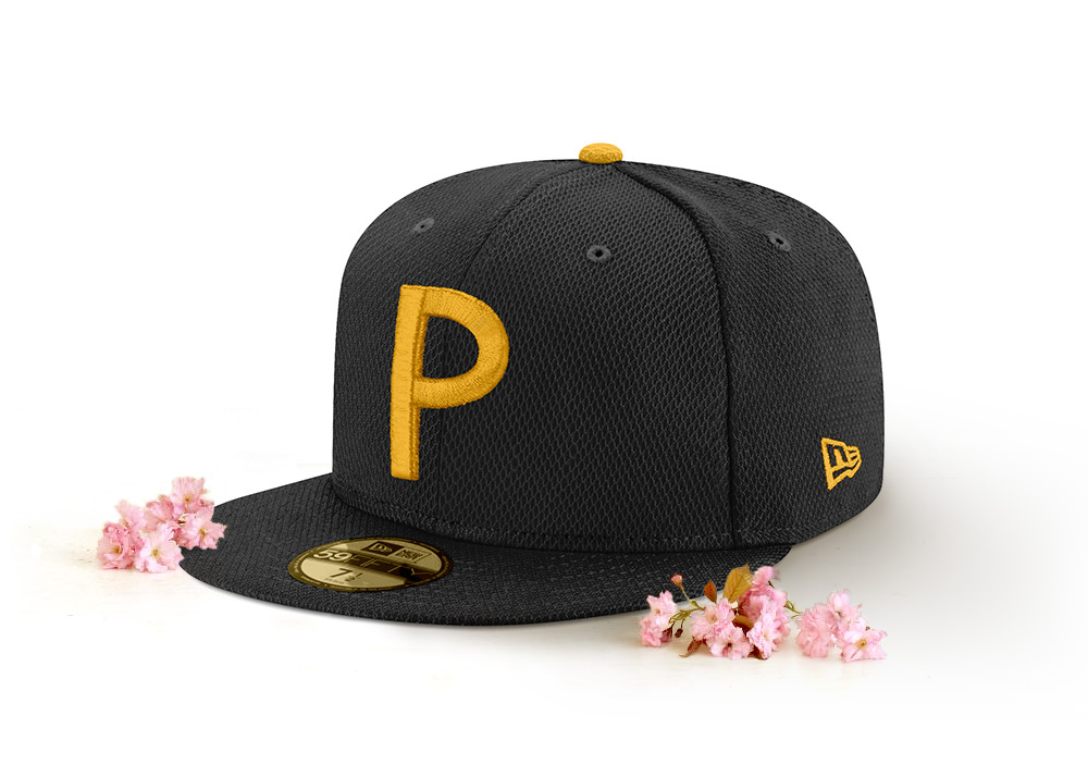 2018 ASG Wash_blossoms_PIT.jpg