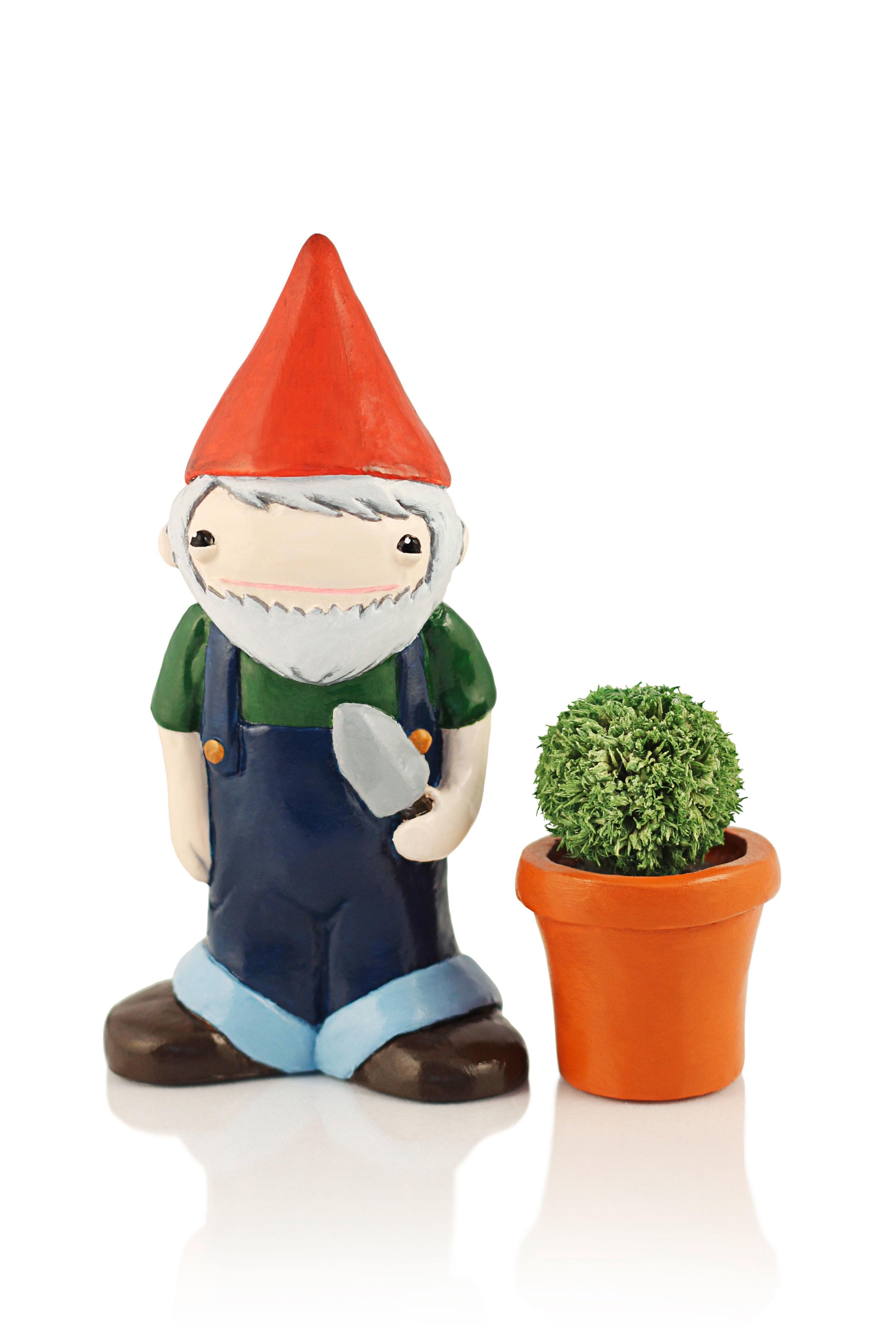 Chomsky the Desk Gnome