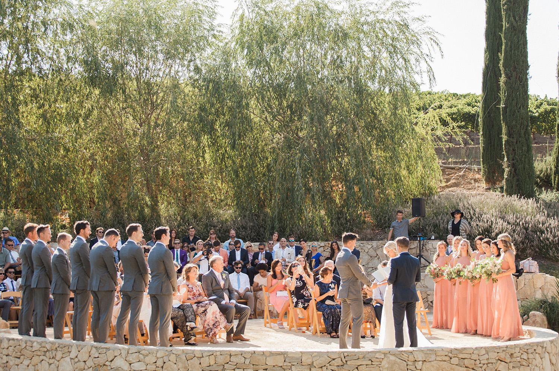 wedding at terra mia