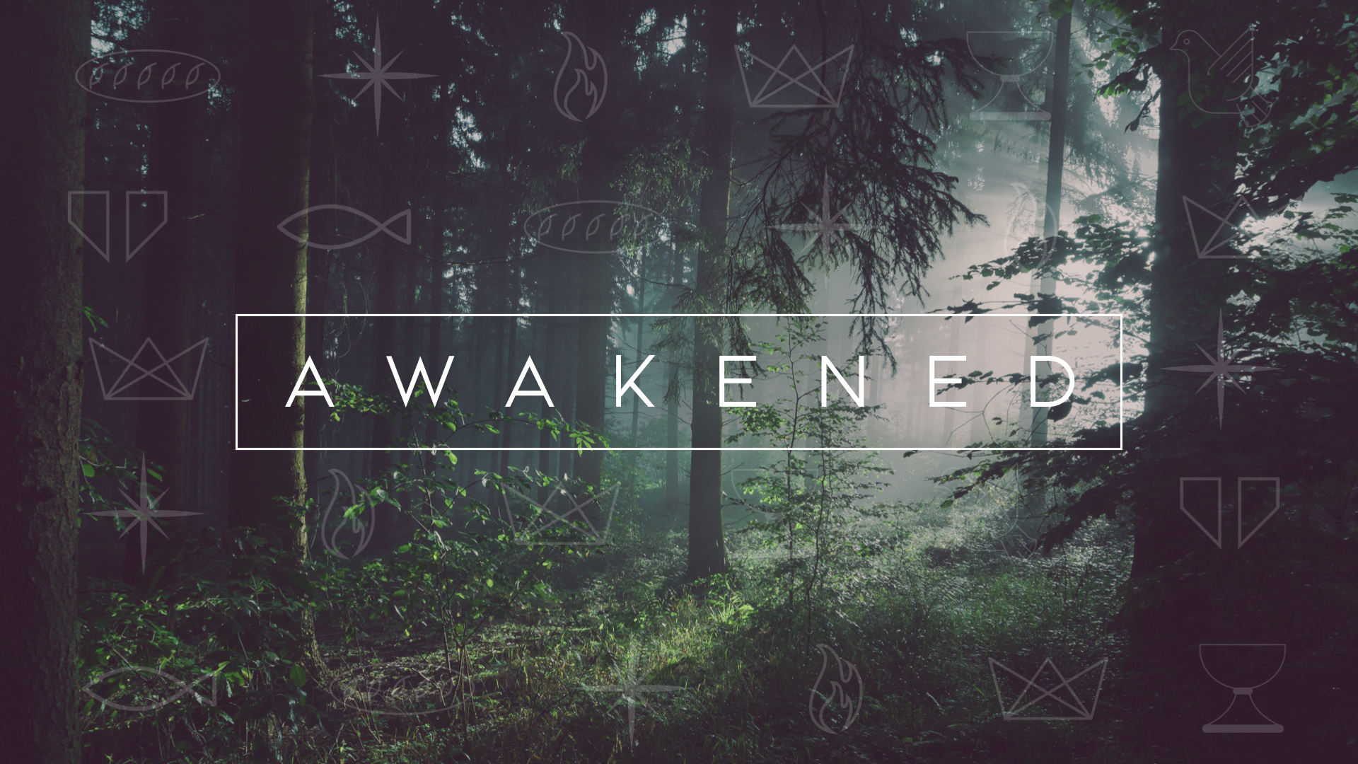 Become awakened to God in your every day life.