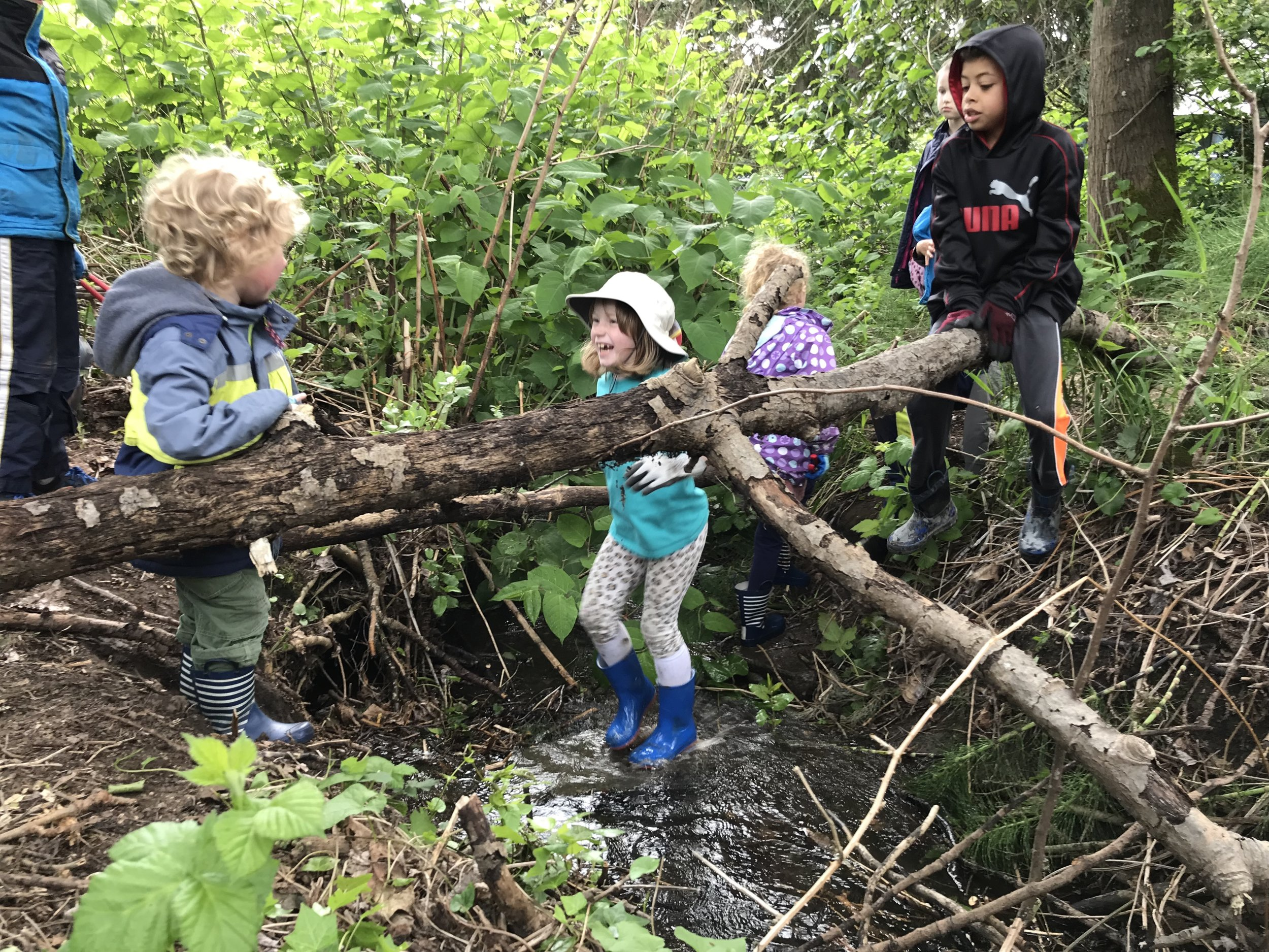 Riverton Creek Stewardship Tukwila