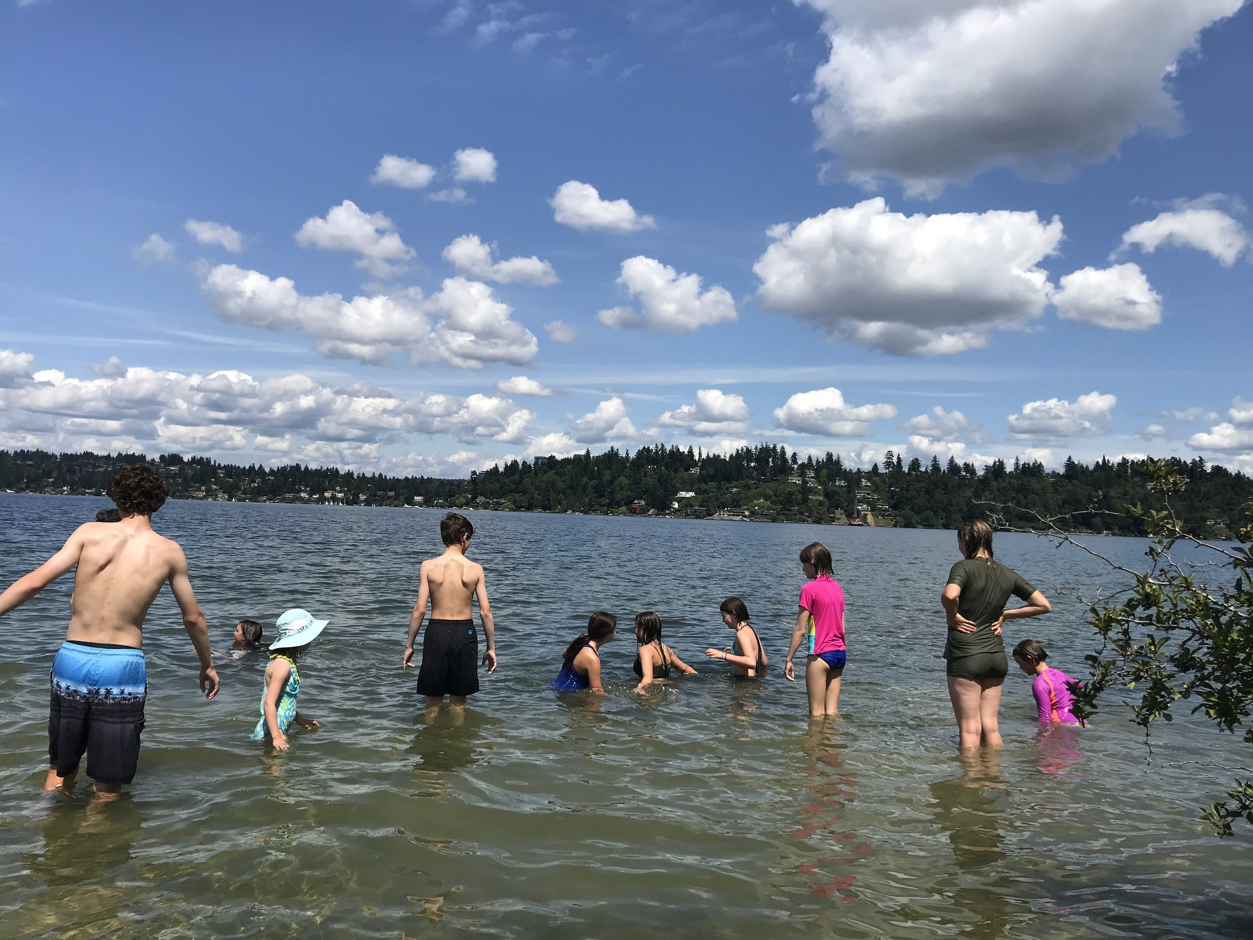 UPCOMING EVENTS for the Homeschool Stewardship Squad   (2nd Thursdays & 4th Wednesdays 11-2)   Thurs 8/8: Luther Burbank Park, Mercer Island *swimming* MTSGT Wed 8/28: Tolt-Macdonald, Carnation, KC Parks *swimming* Thurs 9/12: Belmondo Reach, Renton, KC Parks *swimming/salmon* Wed 9/25: O'Grady Natural Area, Enumclaw, KC Parks *salmon*