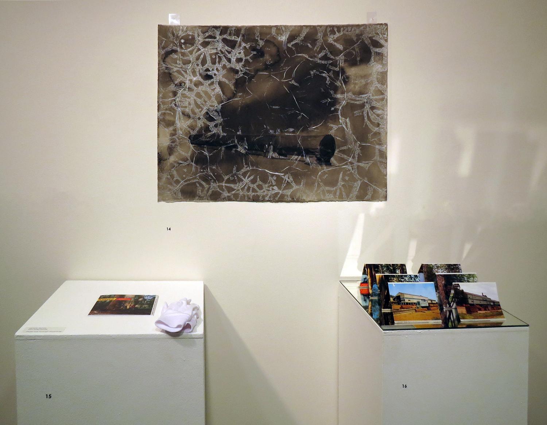 14 - 15. Perdita Phillips, Karri Kings (Installation Detail) 2014