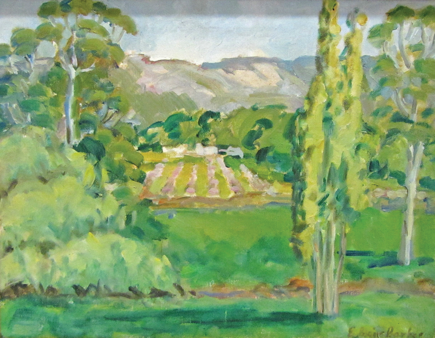 Elizabeth Blair Barber,  Gingin Landscape  c1960s, oil on canvas on board