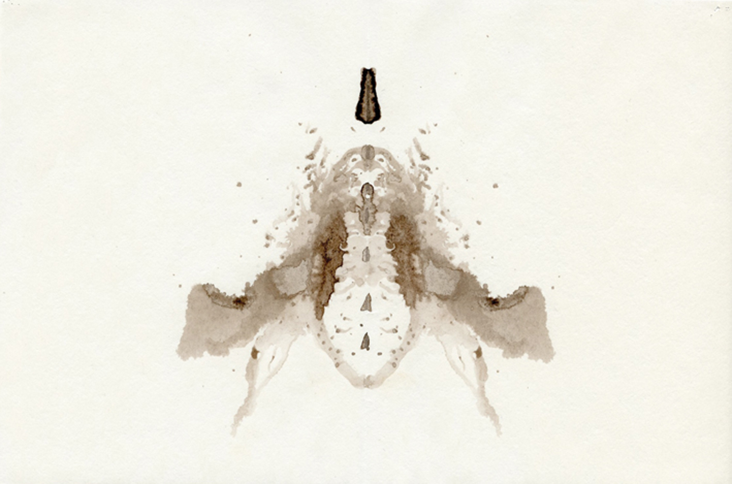 Andrea Wood, Bee detail, ink blot from poster  I cant tell you now what I could have told you then , lithographic offset print