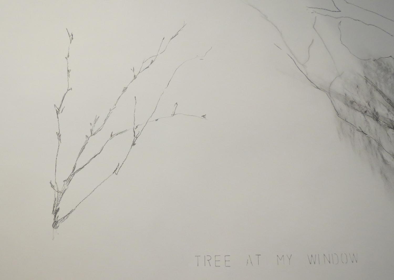 3 Andrea Wood,  Tree at my window Window tree  (Detail), work in progress