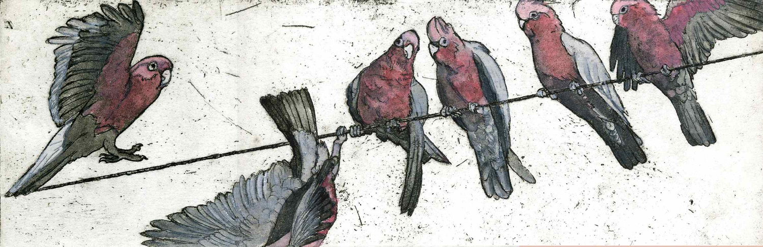 11. Helen Clarke,  Birds on a Wire , hand coloured etching, $240