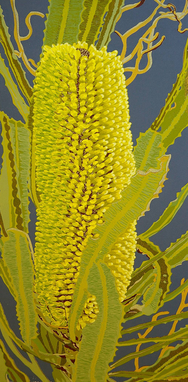 38. Helen Clarke,  Banksia attenuata , reduction linocut, $970