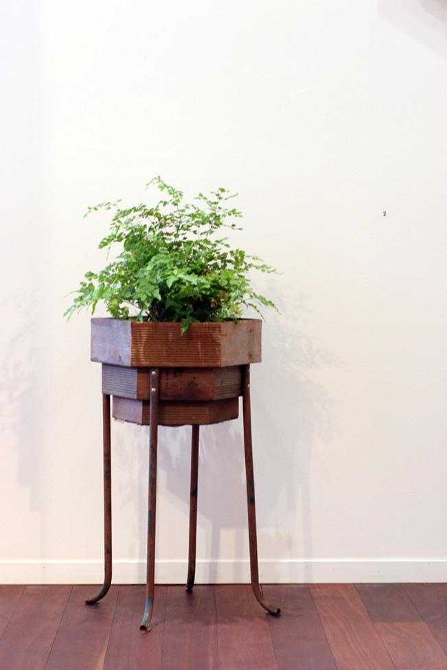 1. Jonathan Holding,  Refuge , Found wood, metal, plant, 62 x 31 x 31cm, $230
