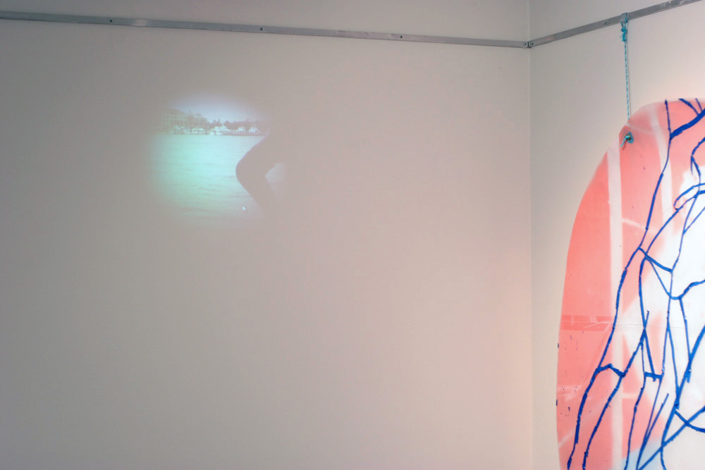 16. Carly Lynch,  Project Endeavour (after Sanders) , Mixed-media installation, dimensions variable, $POA