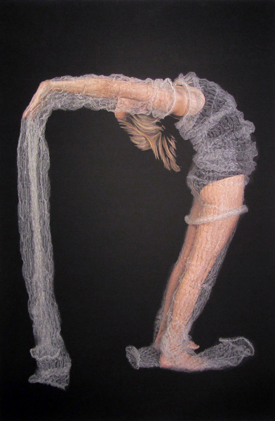 18.  Meditation on Form  by Anne Farren photographic image on canvas (1) phot. Richard Jefferson $615
